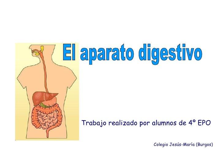 Trabajo realizado por alumnos de 4º EPO Colegio Jesús-María (Burgos) El aparato digestivo