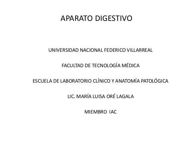 APARATO DIGESTIVO UNIVERSIDAD NACIONAL FEDERICO VILLARREAL FACULTAD DE TECNOLOGÍA MÉDICA ESCUELA DE LABORATORIO CLÍNICO Y ...