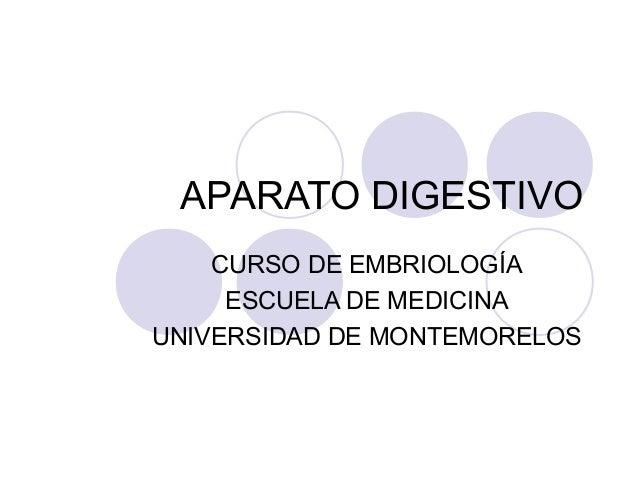 APARATO DIGESTIVO CURSO DE EMBRIOLOGÍA ESCUELA DE MEDICINA UNIVERSIDAD DE MONTEMORELOS