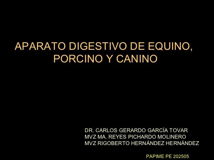 APARATO DIGESTIVO DE EQUINO,     PORCINO Y CANINO           DR. CARLOS GERARDO GARCÍA TOVAR           MVZ MA. REYES PICHAR...