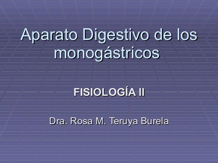 Aparato Digestivo De MonogáStricos