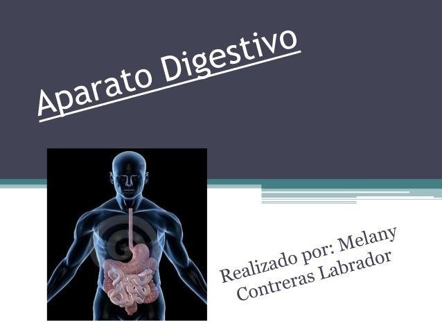 ¿Qué es el Aparato Digestivo? es el conjunto de órganos encargados del proceso de la digestión, es decir, la transformació...