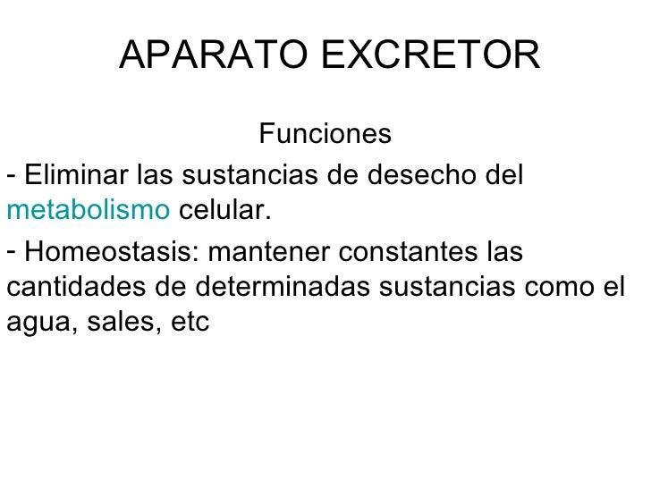 APARATO EXCRETOR <ul><li>Funciones </li></ul><ul><li>Eliminar las sustancias de desecho del  metabolismo  celular. </li></...