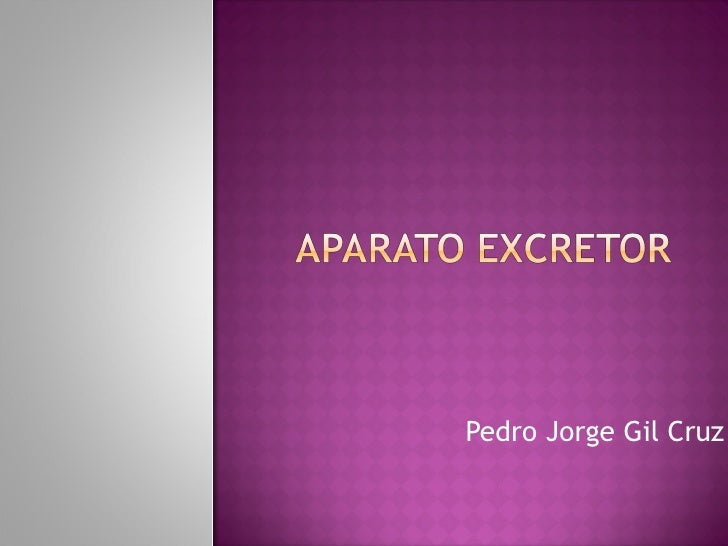 Pedro Jorge Gil Cruz