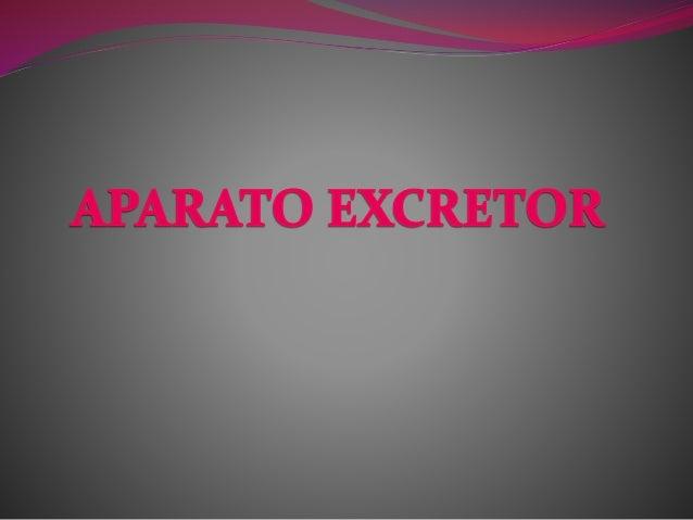 La excreción y el aparato excretor  Las diferentes células de nuestro cuerpo producen una serie de sustancias de desecho ...