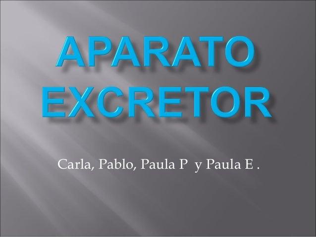 Carla, Pablo, Paula P y Paula E .