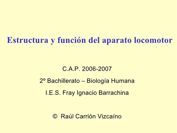 Estructura y función del aparato locomotor C.A.P. 2006-2007 2º Bachillerato – Biología Humana I.E.S. Fray Ignacio Barrachi...
