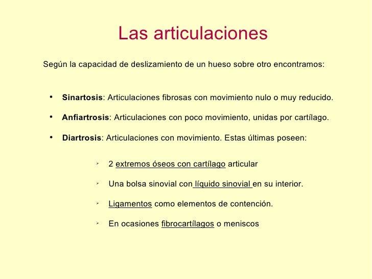 Las articulaciones Según la capacidad de deslizamiento de un hueso sobre otro encontramos: <ul><li>Sinartosis : Articulaci...