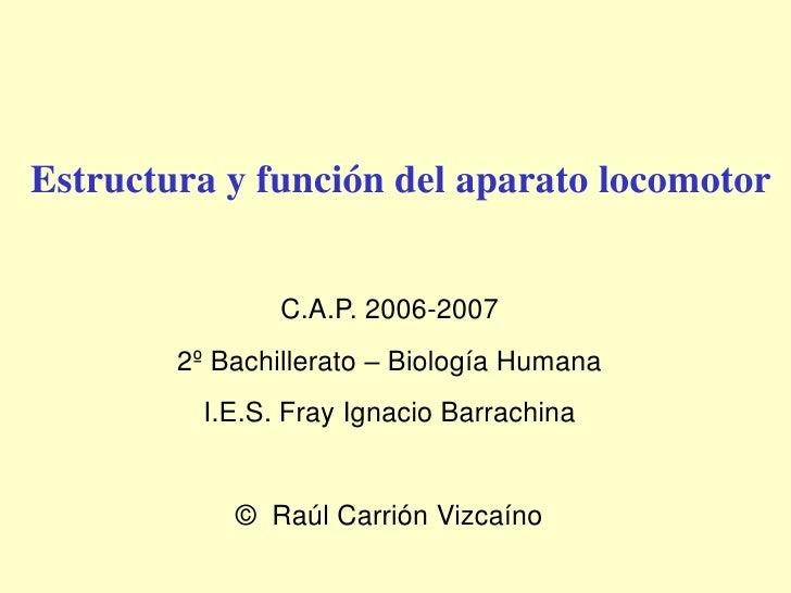 Estructura y función del aparato locomotor                   C.A.P. 2006-2007         2º Bachillerato – Biología Humana   ...