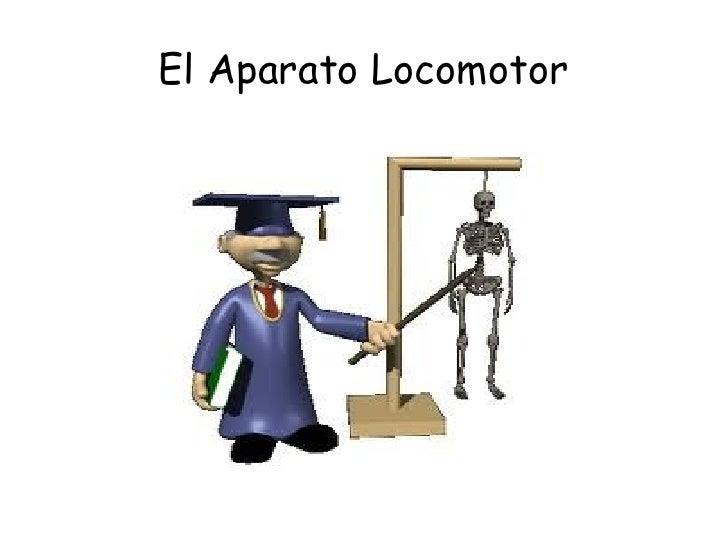 El Aparato Locomotor