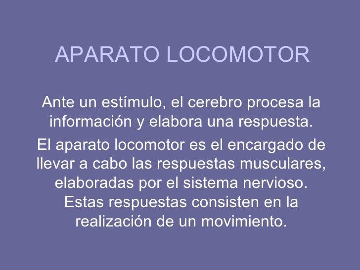 APARATO LOCOMOTOR  Ante un estímulo, el cerebro procesa la   información y elabora una respuesta.El aparato locomotor es e...