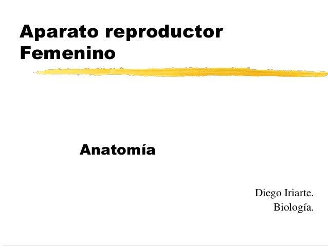 Aparato reproductor Femenino Anatomía Diego Iriarte. Biología.