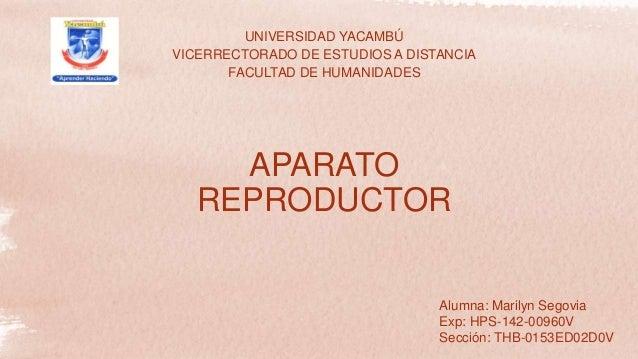 UNIVERSIDAD YACAMBÚ VICERRECTORADO DE ESTUDIOS A DISTANCIA FACULTAD DE HUMANIDADES Alumna: Marilyn Segovia Exp: HPS-142-00...