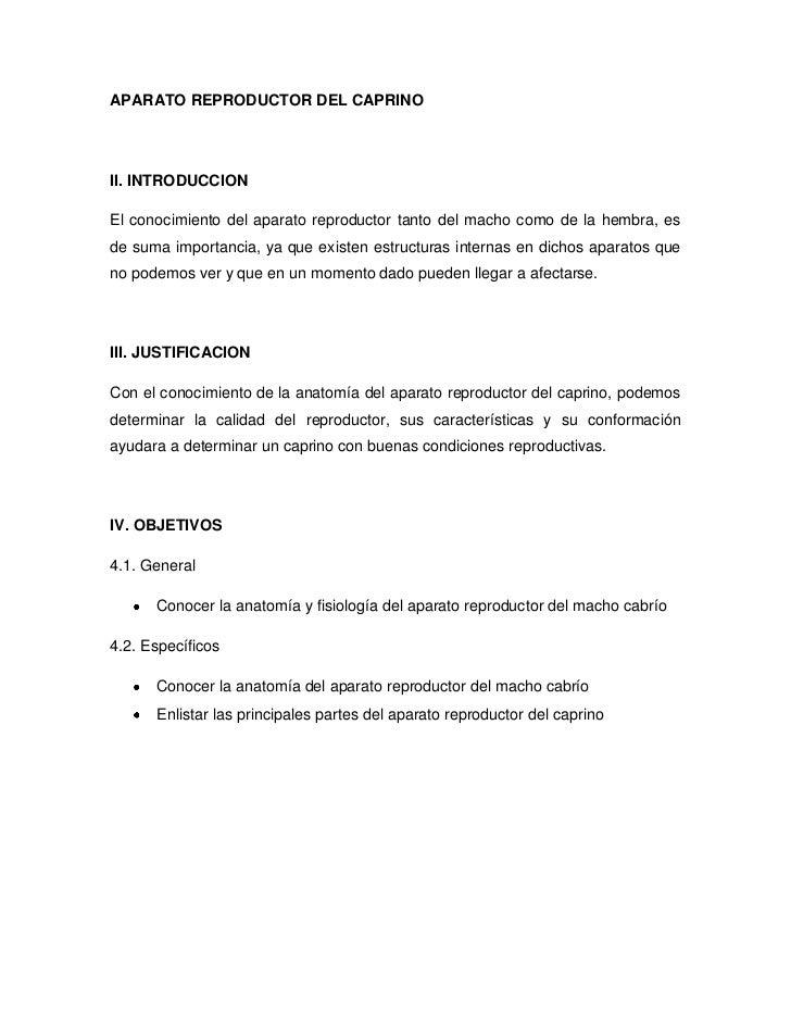 aparato-reproductor-del-caprino-1-728.jpg?cb=1349644147