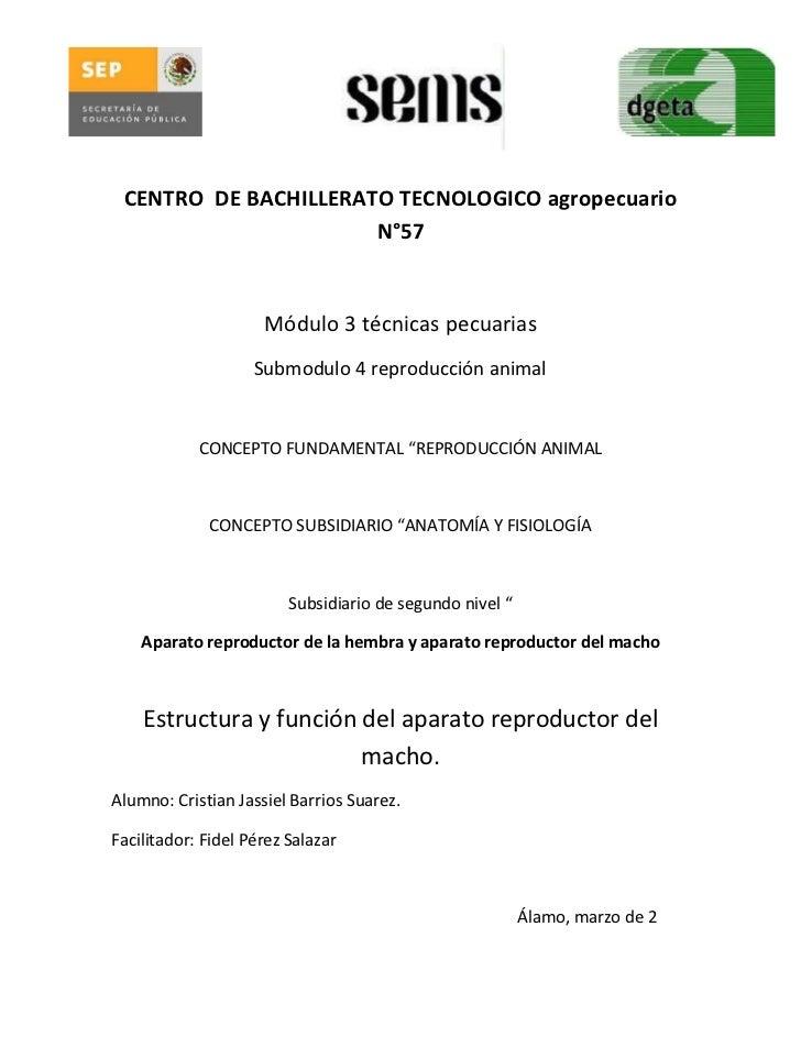 CENTRO DE BACHILLERATO TECNOLOGICO agropecuario                      N°57                     Módulo 3 técnicas pecuarias ...