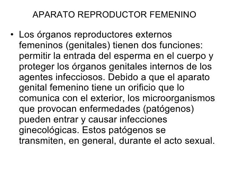 APARATO REPRODUCTOR FEMENINO <ul><li>Los órganos reproductores externos femeninos (genitales) tienen dos funciones: permit...