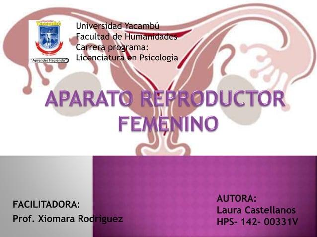 FACILITADORA: Prof. Xiomara Rodríguez AUTORA: Laura Castellanos HPS- 142- 00331V Universidad Yacambú Facultad de Humanidad...