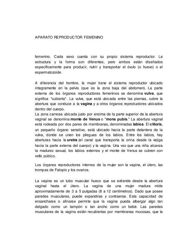 APARATO REPRODUCTOR FEMENINO  femenino. Cada sexo cuenta con su propio sistema reproductor. La  estructura y la forma son ...
