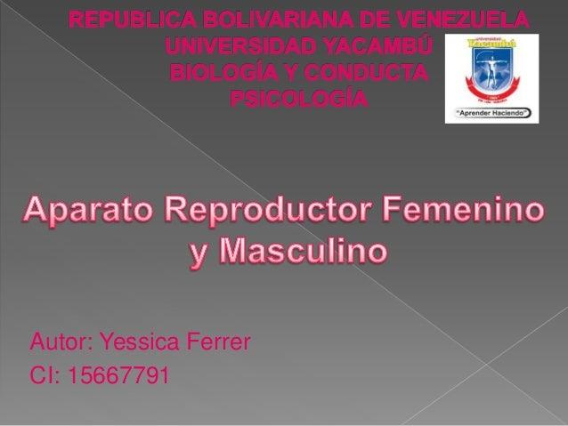 Autor: Yessica Ferrer CI: 15667791