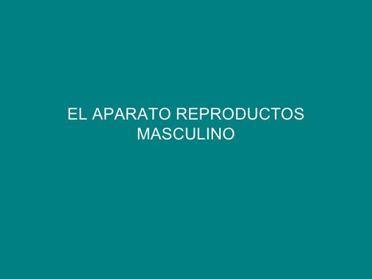 EL APARATO REPRODUCTOS MASCULINO