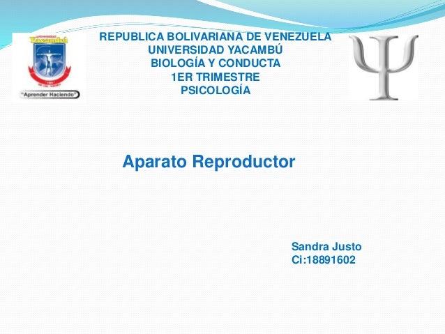 REPUBLICA BOLIVARIANA DE VENEZUELA UNIVERSIDAD YACAMBÚ BIOLOGÍA Y CONDUCTA 1ER TRIMESTRE PSICOLOGÍA Sandra Justo Ci:188916...