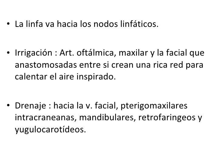 <ul><li>La linfa va hacia los nodos linfáticos.  </li></ul><ul><li>Irrigación : Art. oftálmica, maxilar y la facial que an...