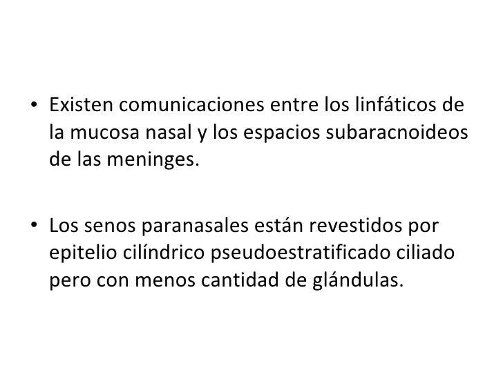 <ul><li>Existen comunicaciones entre los linfáticos de la mucosa nasal y los espacios subaracnoideos de las meninges. </li...