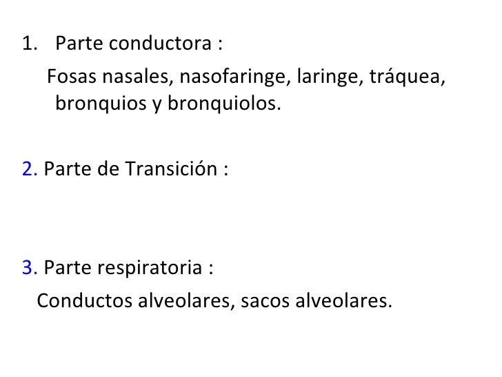 <ul><li>Parte conductora : </li></ul><ul><li>Fosas nasales, nasofaringe, laringe, tráquea, bronquios y bronquiolos. </li><...