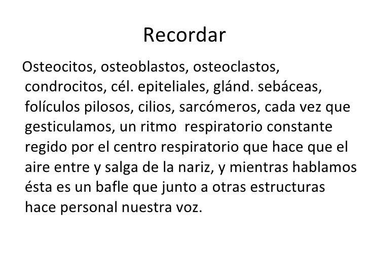 Recordar <ul><li>Osteocitos, osteoblastos, osteoclastos, condrocitos, cél. epiteliales, glánd. sebáceas, folículos pilosos...