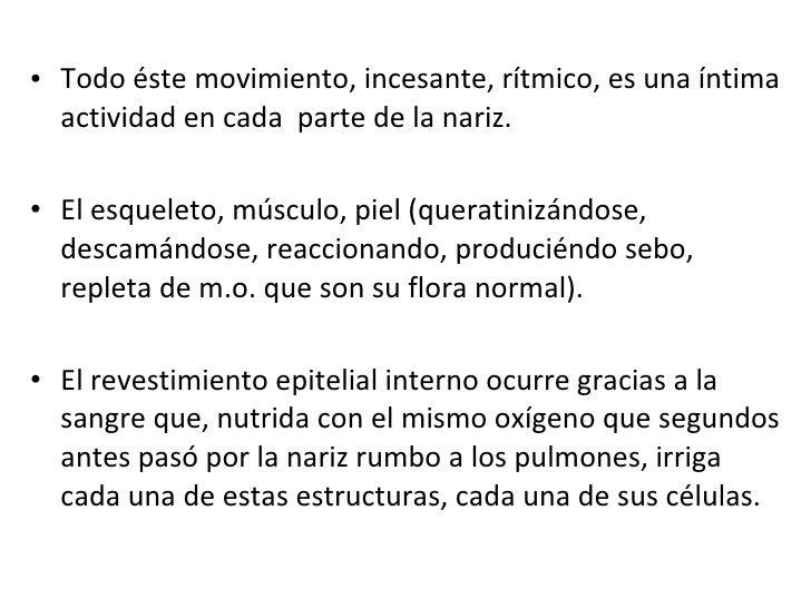 <ul><li>Todo éste movimiento, incesante, rítmico, es una íntima actividad en cada  parte de la nariz. </li></ul><ul><li>El...