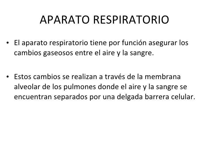 APARATO RESPIRATORIO <ul><li>El aparato respiratorio tiene por función asegurar los cambios gaseosos entre el aire y la sa...
