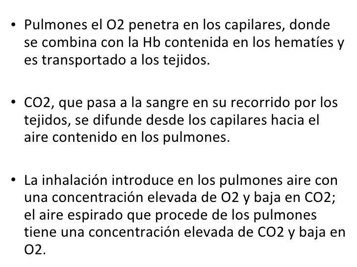 <ul><li>Pulmones el O2 penetra en los capilares, donde se combina con la Hb contenida en los hematíes y es transportado a ...