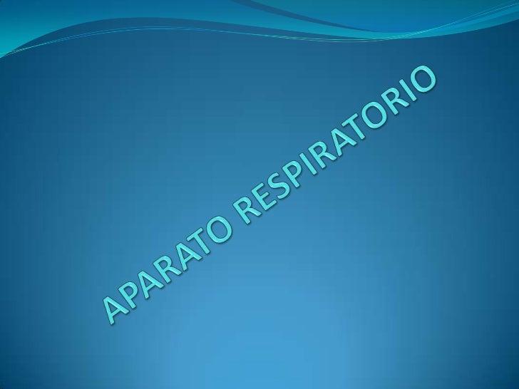APARATO RESPIRATORIO<br />