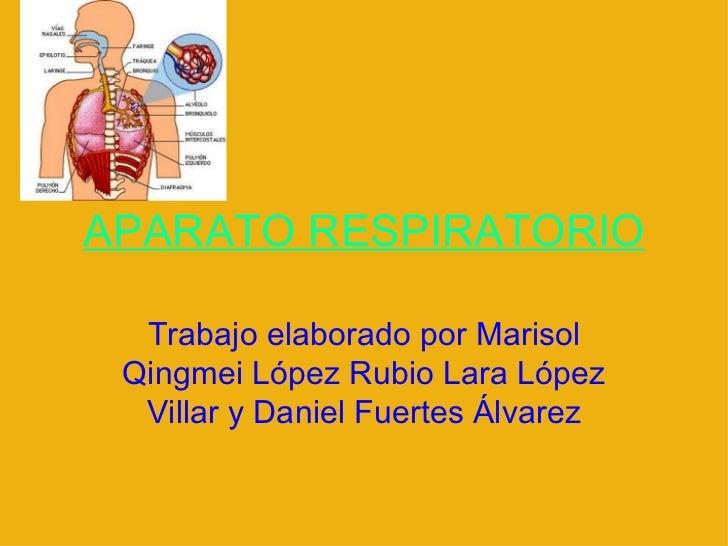 APARATO RESPIRATORIO Trabajo elaborado por Marisol Qingmei López Rubio Lara López Villar y Daniel Fuertes Álvarez