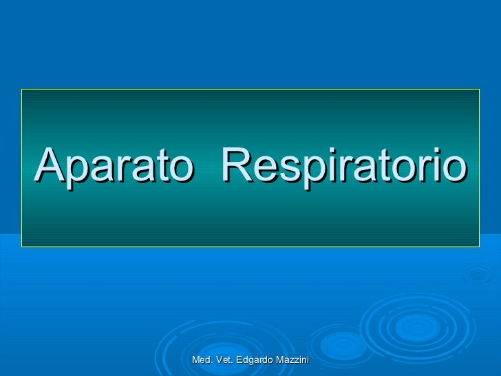 Aparato Respiratorio       Med. Vet. Edgardo Mazzini