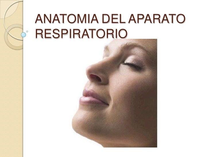 ANATOMIA DEL APARATORESPIRATORIO