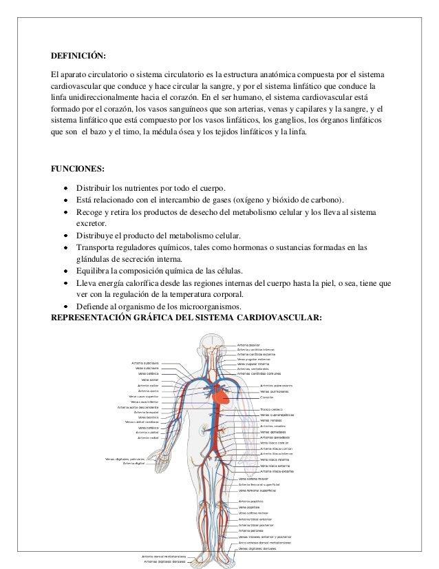Bonito Ganglios Linfáticos En Mapa Corporal Molde - Anatomía de Las ...