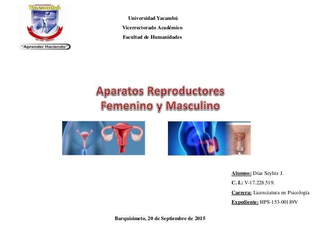 Universidad Yacambú Vicerrectorado Académico Facultad de Humanidades Alumno: Díaz Seylitz J. C. I.: V-17.228.519. Carrera:...