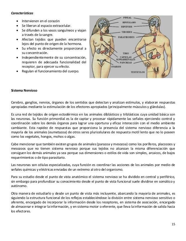 Aparatos y organos