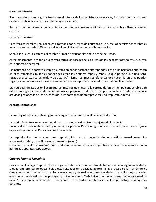Lujoso Partes Del Hígado Y Funciones Bandera - Imágenes de Anatomía ...