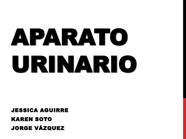 APARATOURINARIOJESSICA AGUIRREKAREN SOTOJORGE VÁZQUEZ
