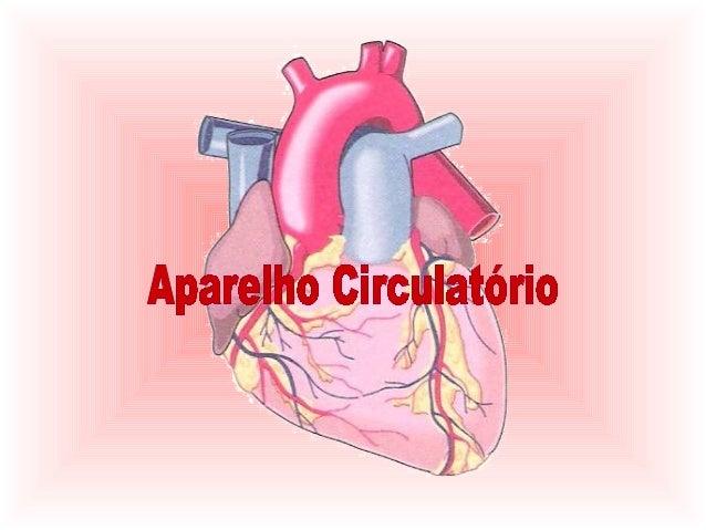 Como bate o nosso coração para poder             bombear o sangue?   O coração é um órgão que nunca pára e todos os seus m...