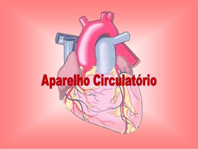 Como bate o nosso coração para poder              bombear o sangue?   O coração é um órgão que nunca pára e todos os seus ...