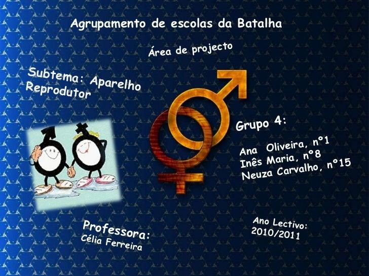 Agrupamento de escolas da Batalha Área de projecto Professora: Célia Ferreira Grupo 4: Ana  Oliveira, nº1 Inês Maria, nº8 ...