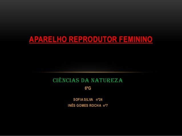 APARELHO REPRODUTOR FEMININO     CIÊNCIAS DA NATUREZA                 6ºG           SOFIA SILVA nº24         INÊS GOMES RO...