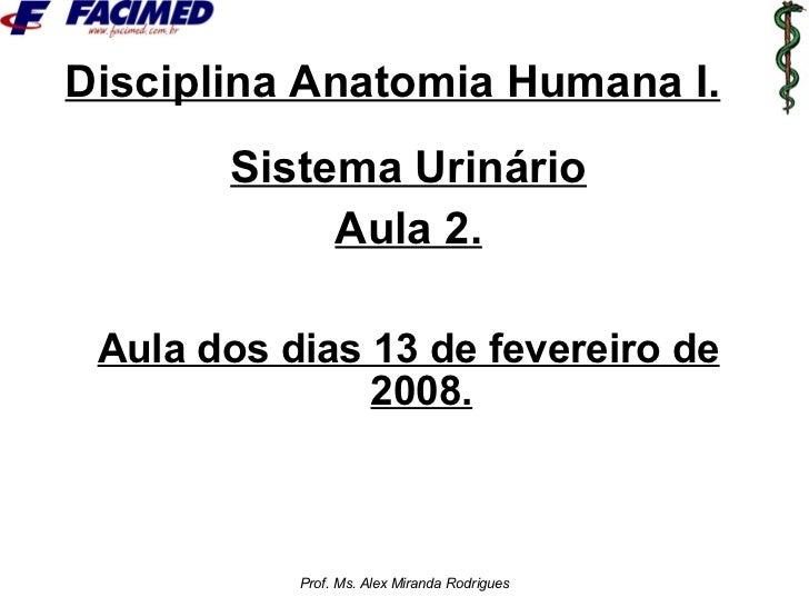 Disciplina Anatomia Humana I. <ul><li>Sistema Urinário </li></ul><ul><li>Aula 2. </li></ul><ul><li>Aula dos dias 13 de fev...