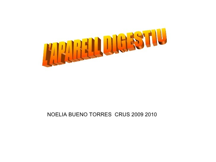 L'APARELL DIGESTIU NOELIA BUENO TORRES  CRUS 2009 2010