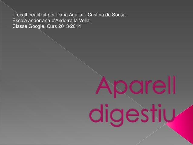Treball realitzat per Dana Aguilar i Cristina de Sousa. Escola andorrana d'Andorra la Vella. Classe Google. Curs 2013/2014