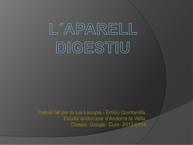 Treball fet per la Lei Lacopia i Emilio Quintanilla. Escola andorrana d'Andorra la Vella. Classe: Google. Curs: 2013/2014