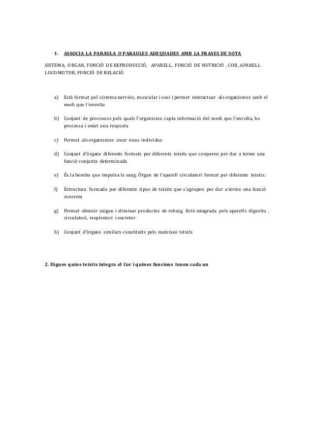 Aparell o sistemes taula Slide 2
